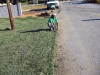 Sod and Seed